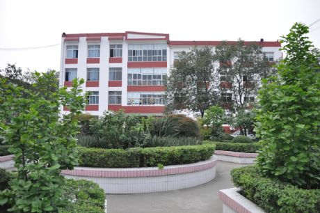 办公楼前花园